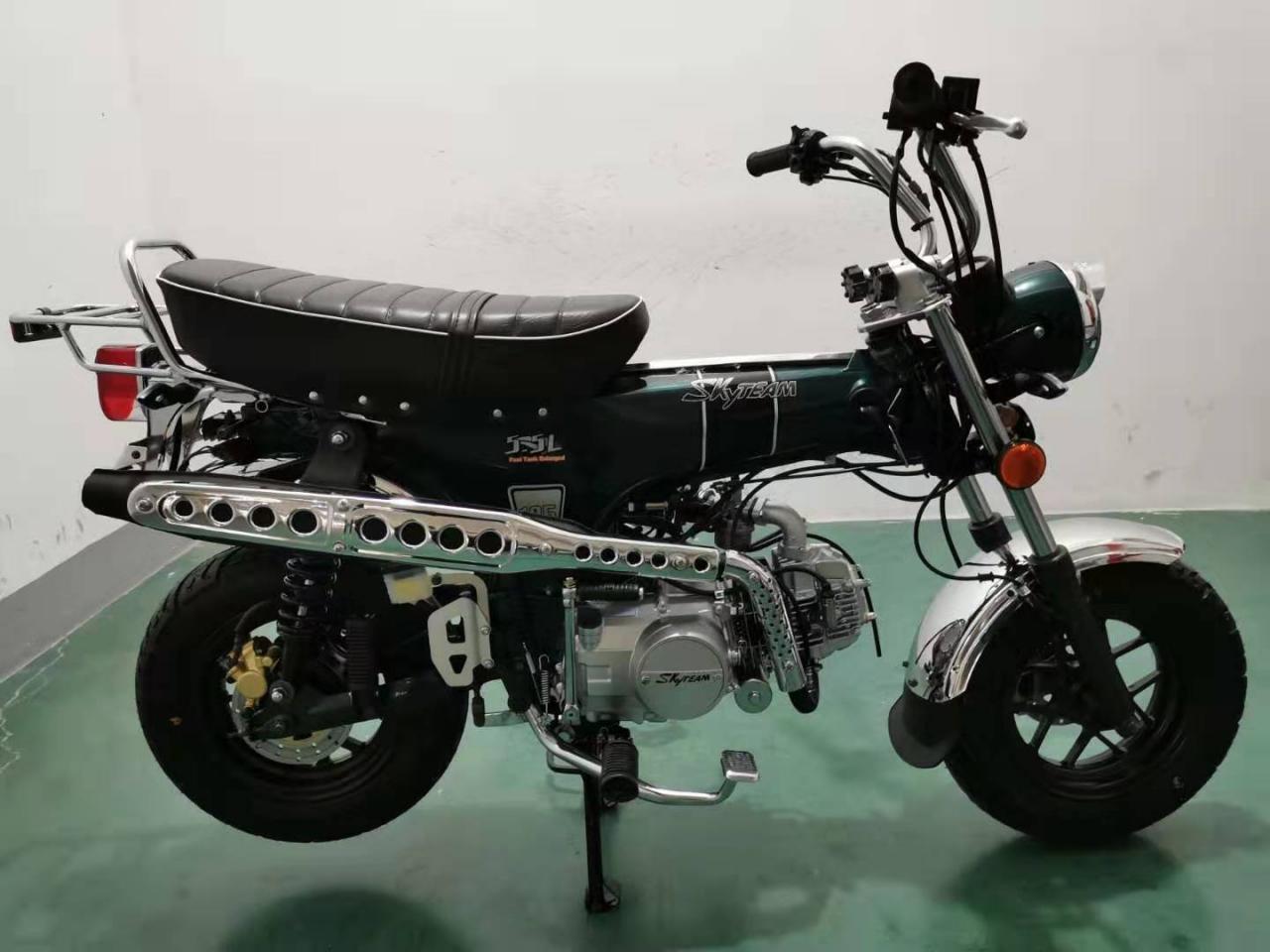 SKYTEAM  SKYMAX 125-6 e-Carb de LUXE Metallic-Racing Green