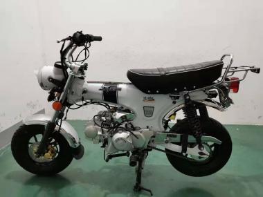 SKYTEAM  SKYMAX 125-6 e-Carb de LUXE Metallic-White