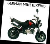 -PBR Auspuff 125cc EU3 chrom original - obenliegend