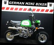 "SkyTeam 50 Le MANS PRO GORILLA""LIMITED EDITION GREEN"""