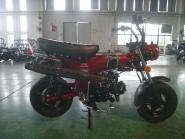 SKYTEAM - SKYMAX 50 Metallic-Red E5 CLUB-S Injektion