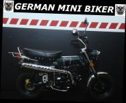 SKYTEAM  SKYMAX 125-6 CLUB-S INJECTION de Luxe METALLIC-RACING-GREEN